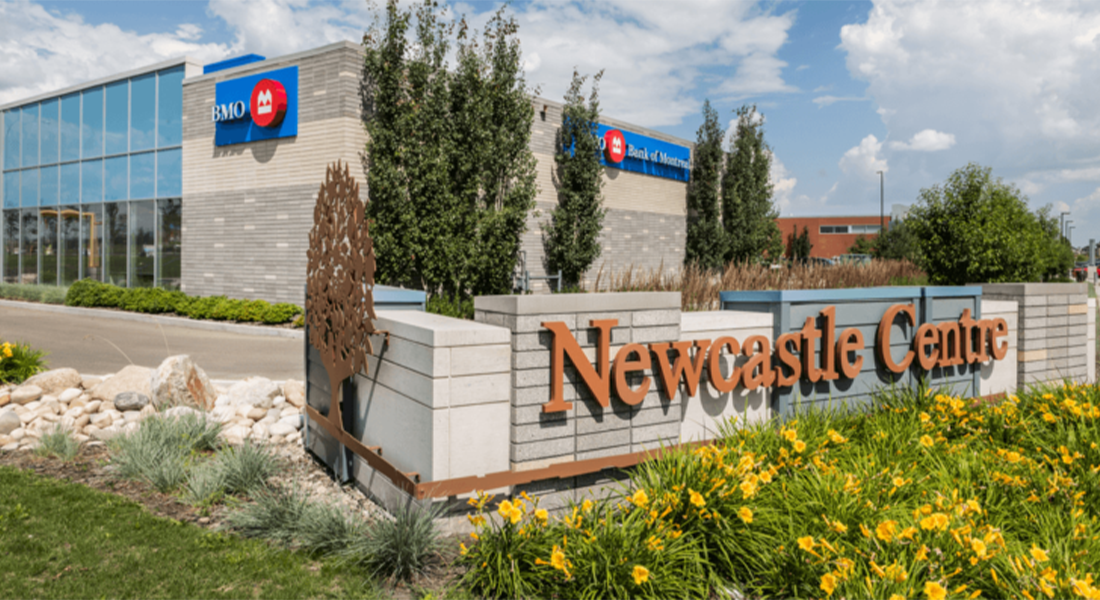 Edmonton Community Feature: The Best of Newcastle Featured Image